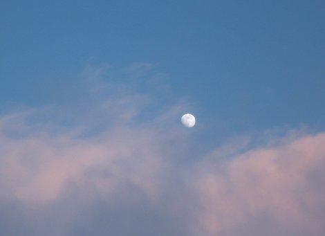 Full Moon in Leo & Change is in the wind . . .