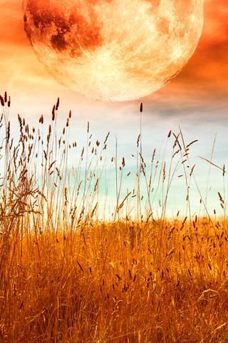 Midsummer Full Moon