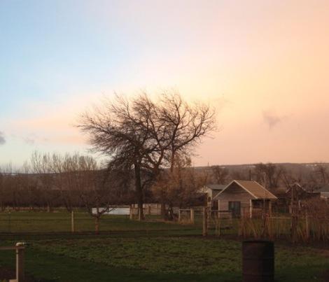 Glowing Spring Sky